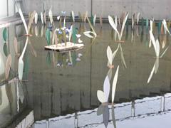 200910izanagi 008.jpg